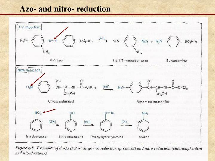 Azo- and nitro- reduction