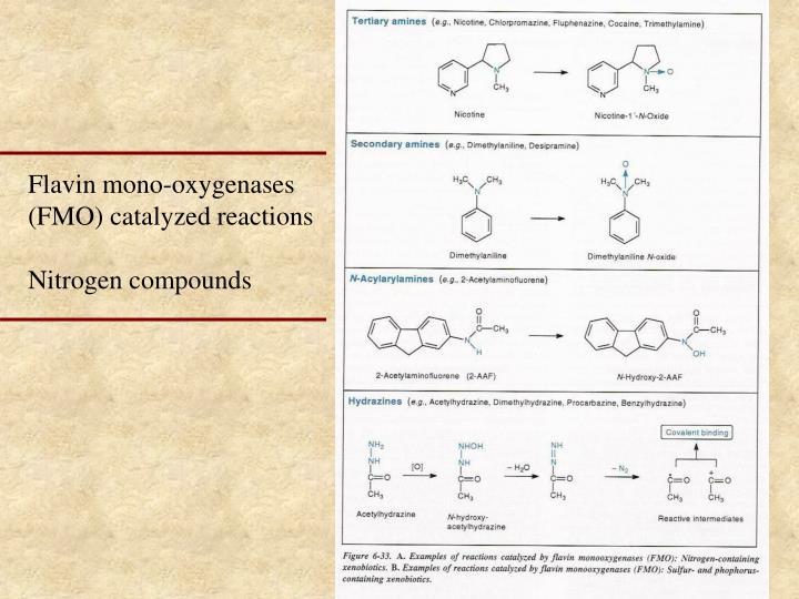 Flavin mono-oxygenases