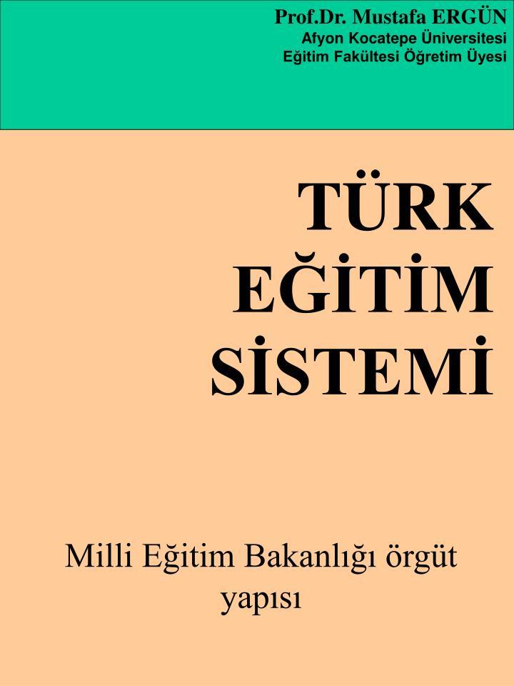 Prof.Dr. Mustafa ERGN