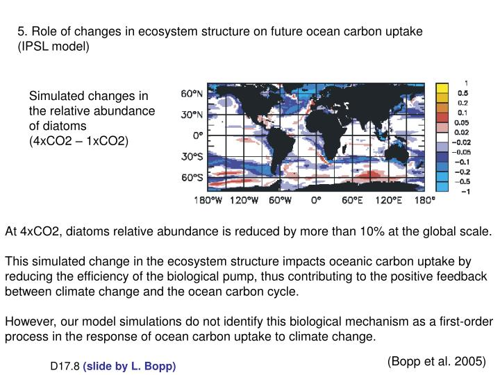 5. Role of changes in ecosystem structure on future ocean carbon uptake