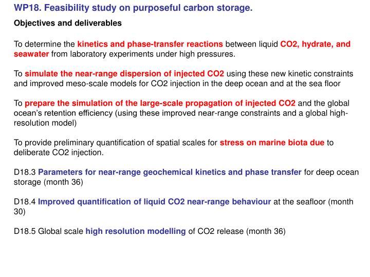WP18. Feasibility study on purposeful carbon storage.