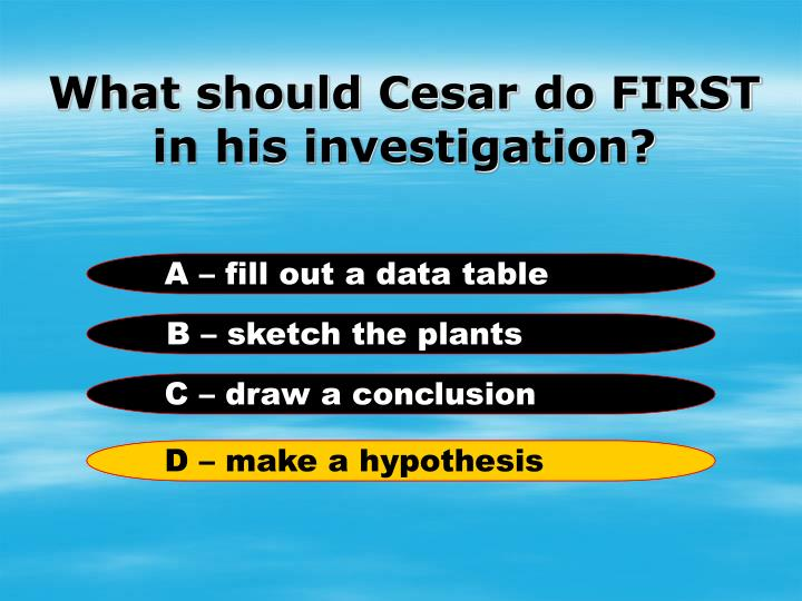 What should Cesar do FIRST in his investigation?