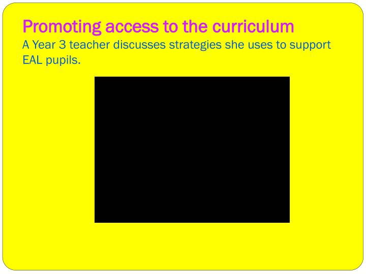 Promoting access to the curriculum