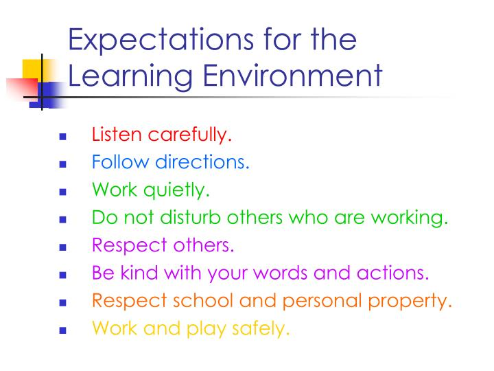 Expectations for the Learning Environment