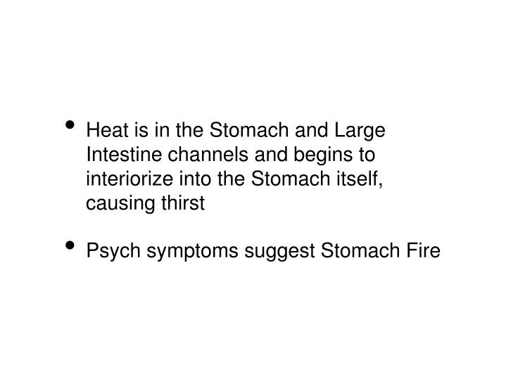 Heat is in the Stomach and Large Intestine channels and begins to interiorize into the Stomach itself, causing thirst