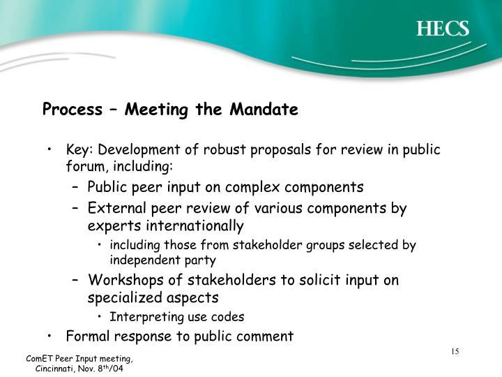 Process – Meeting the Mandate