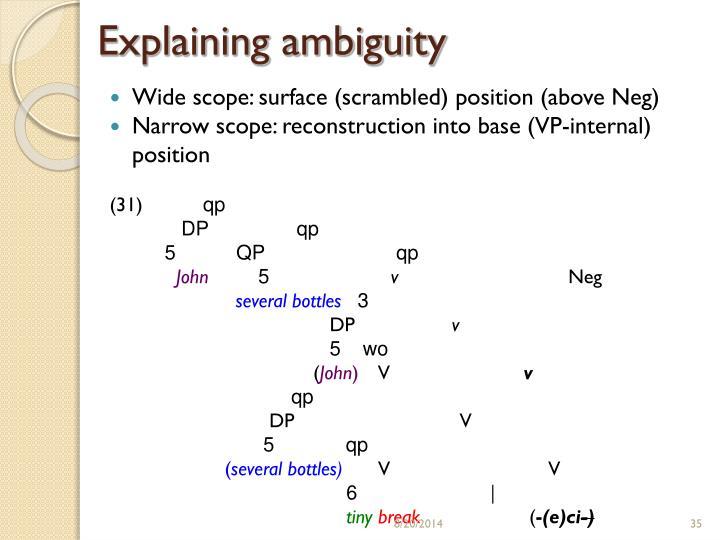 Explaining ambiguity