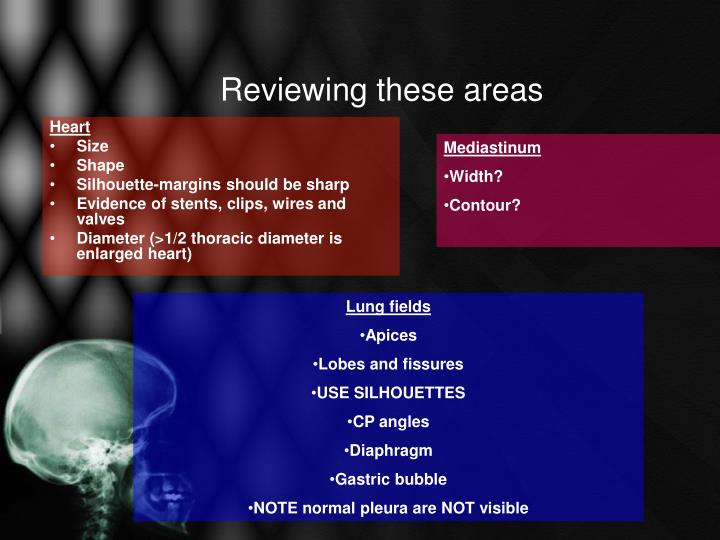 Reviewing these areas