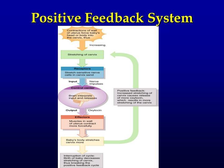 Positive Feedback System