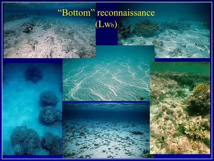 """Bottom"" reconnaissance"