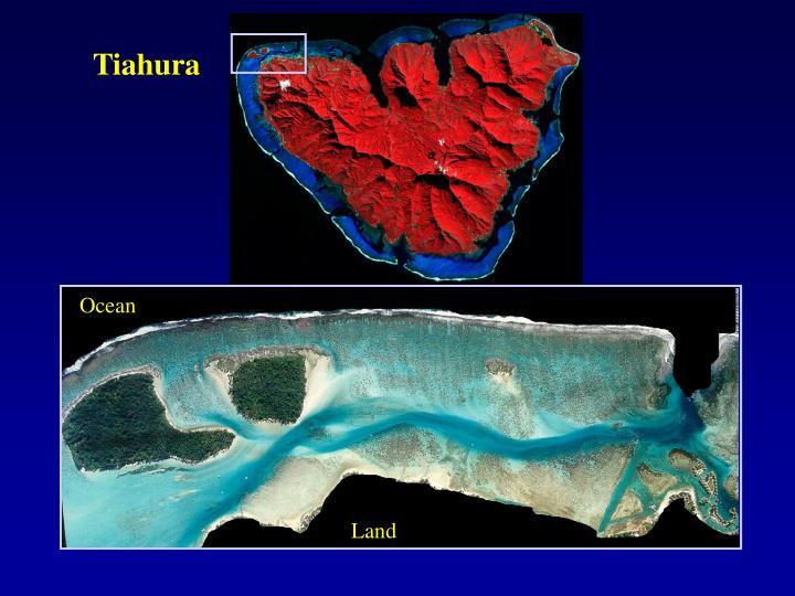 Tiahura