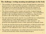 the challenge rooting meaning morphologies in the body