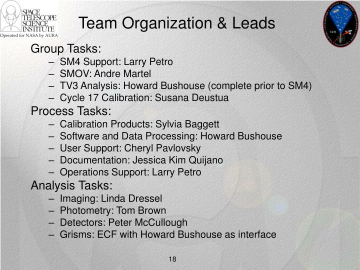 Team Organization & Leads