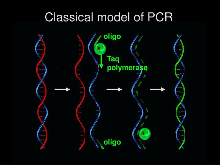 Classical model of PCR