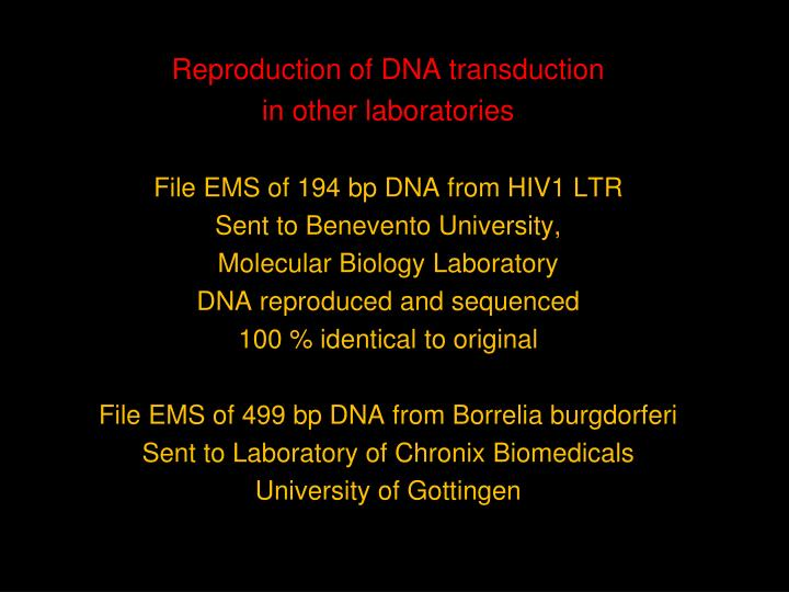 Reproduction of DNA transduction