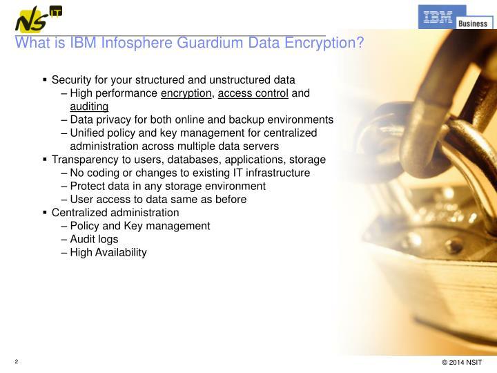 What is IBM Infosphere Guardium Data Encryption?