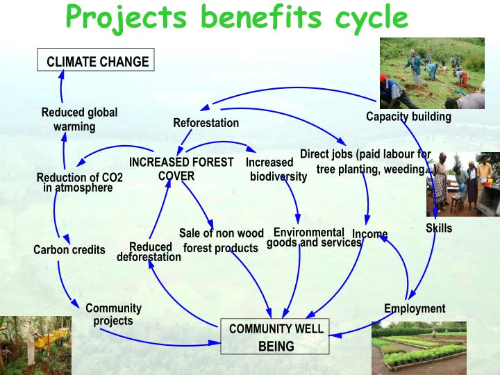 Projects benefits cycle