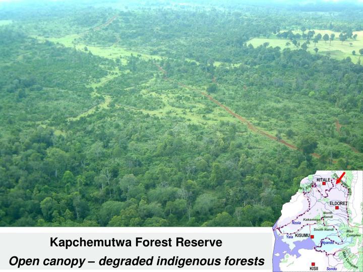 Kapchemutwa Forest Reserve