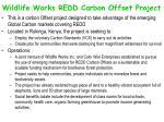 wildlife works redd carbon offset project