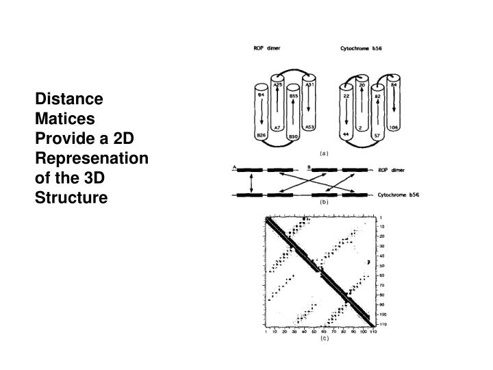 Distance Matices Provide a 2D Represenation of the 3D Structure