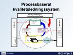 processbaserat kvalitetsledningssystem1
