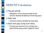 newcnt calculations1