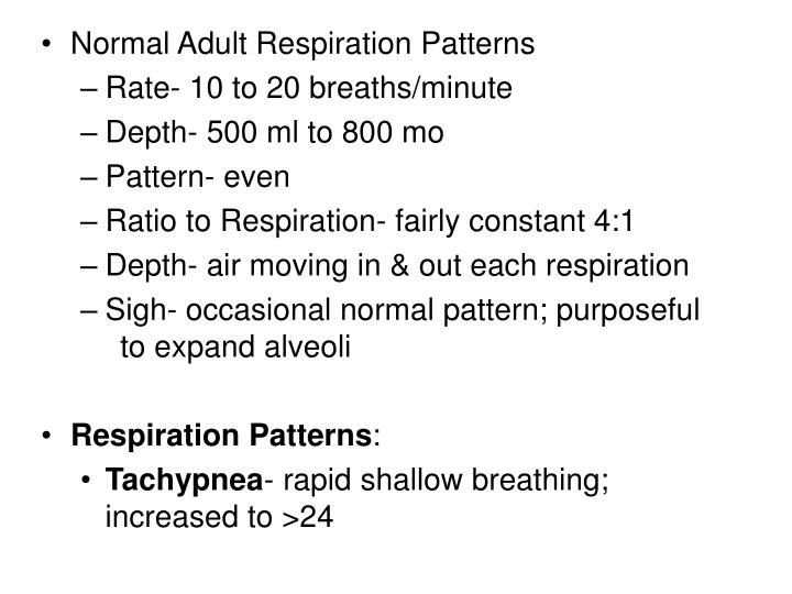 Normal Adult Respiration Patterns