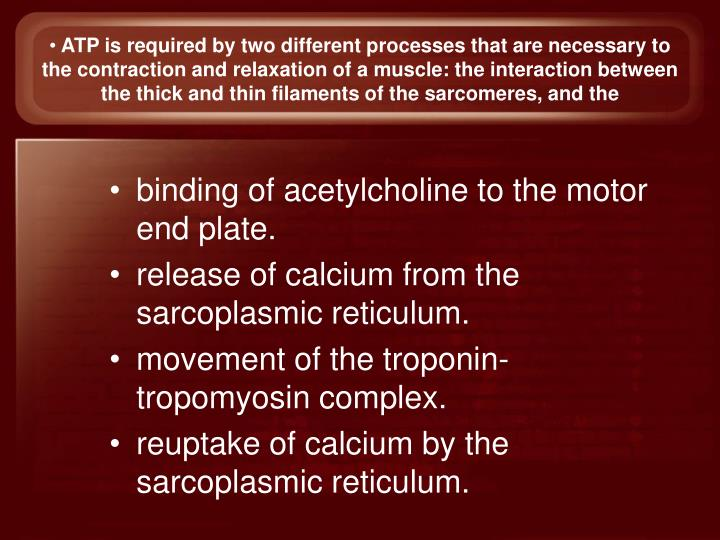 ATP is required by two different processes that are necessary to the contraction and relaxation of a muscle: the interaction between the thick and thin filaments of the sarcomeres, and the