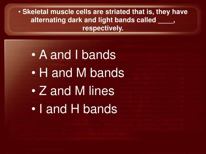 Skeletal muscle cells are striated that is, they have alternating dark and light bands called ____, respectively.