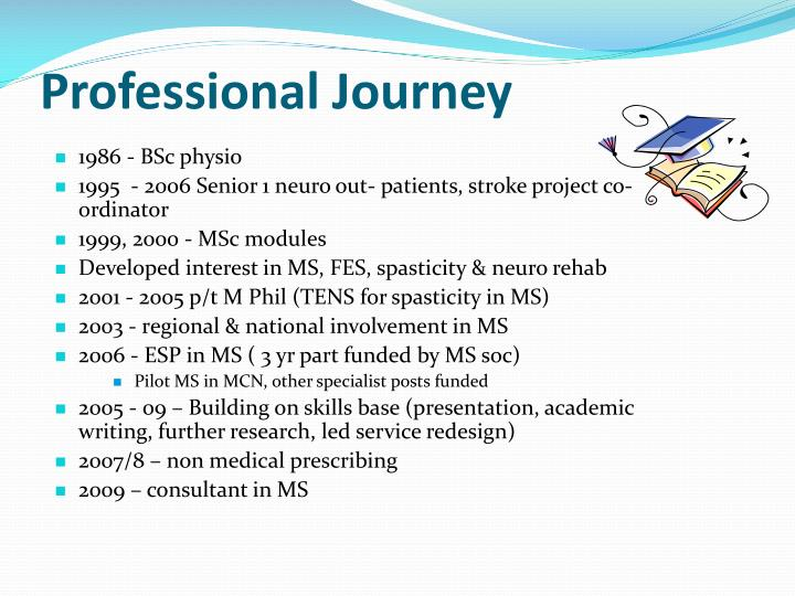 Professional Journey