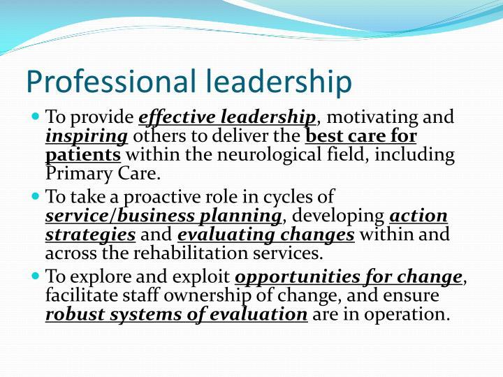 Professional leadership