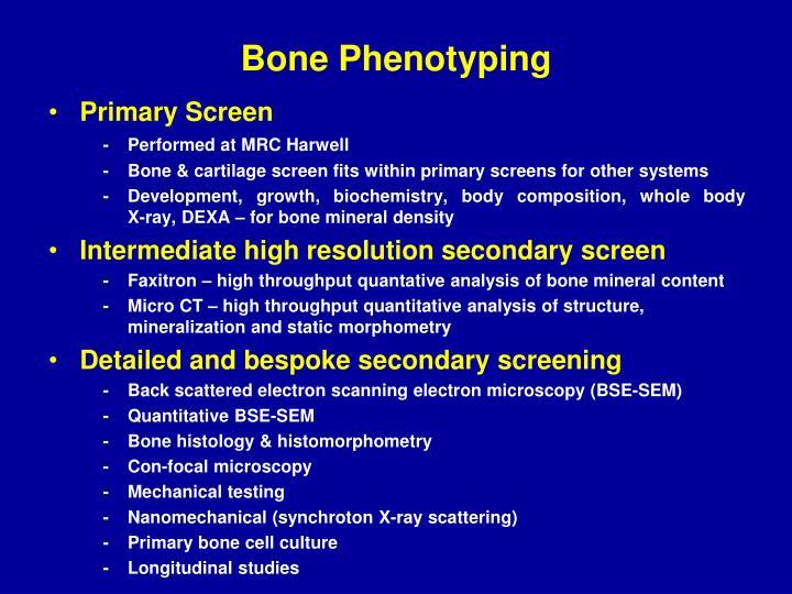 Bone Phenotyping