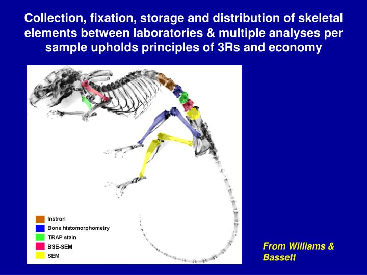 Collection, fixation, storage and distribution of skeletal elements between laboratories & multiple analyses per sample upholds principles of 3Rs and economy