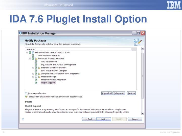IDA 7.6 Pluglet Install Option