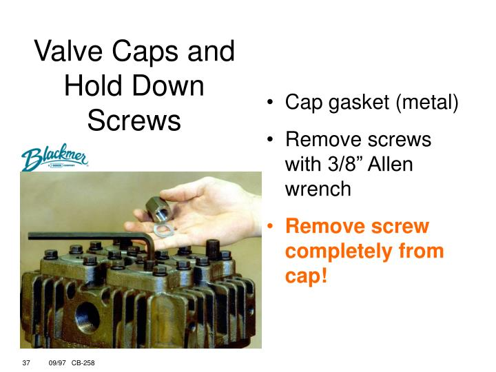 Valve Caps and Hold Down Screws