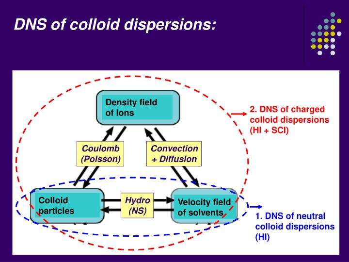 DNS of colloid dispersions: