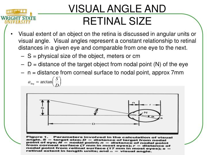 VISUAL ANGLE AND RETINAL SIZE