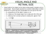 visual angle and retinal size