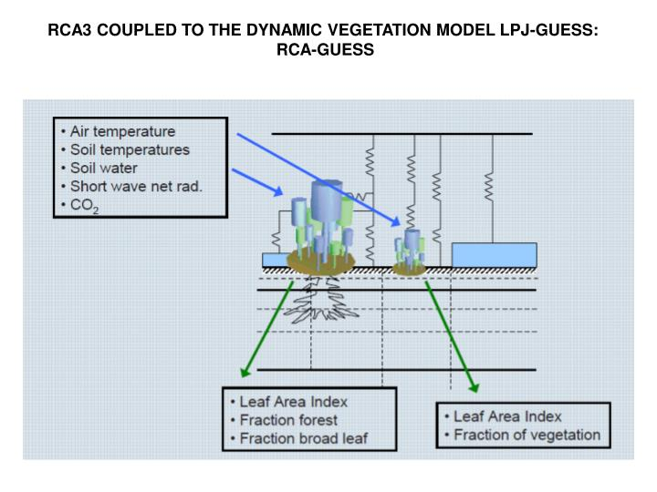 RCA3 COUPLED TO THE DYNAMIC VEGETATION MODEL LPJ-GUESS: