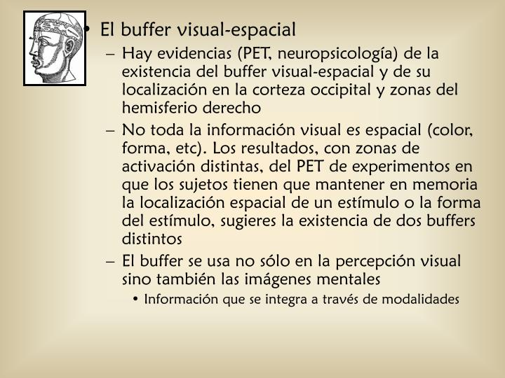 El buffer visual-espacial