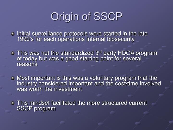 Origin of SSCP