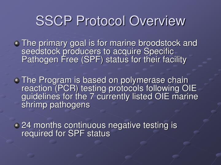 SSCP Protocol Overview