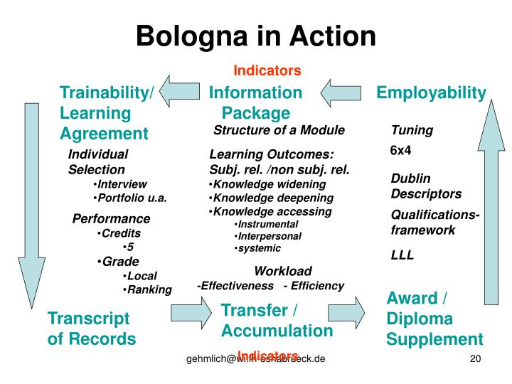 Bologna in Action