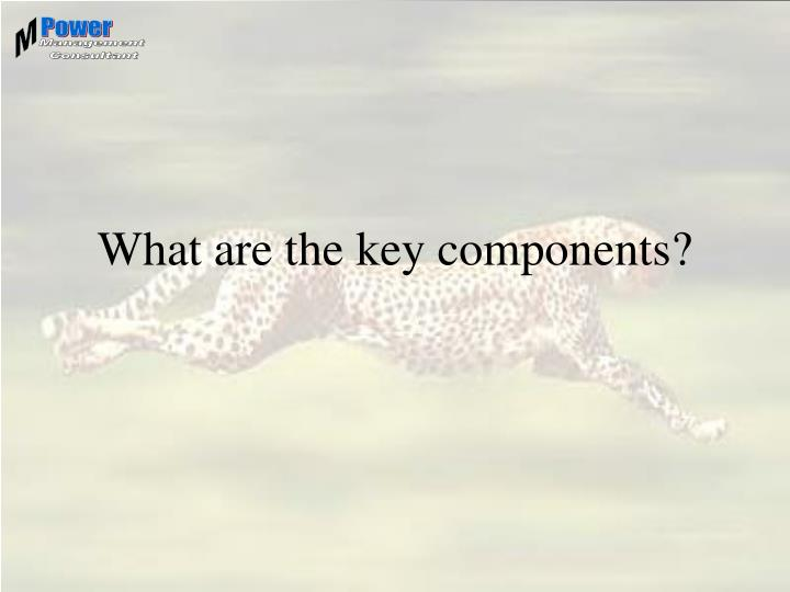 What are the key components?