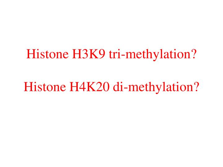 Histone H3K9 tri-methylation?