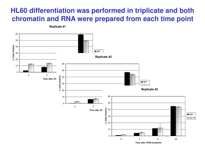 HL60 differentiation was performed in triplicate and both chromatin and RNA were prepared from each time point