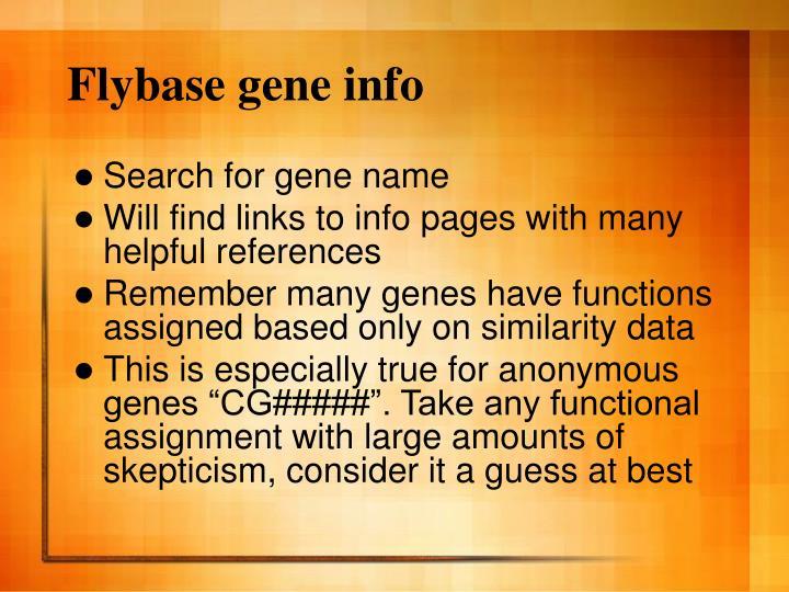 Flybase gene info