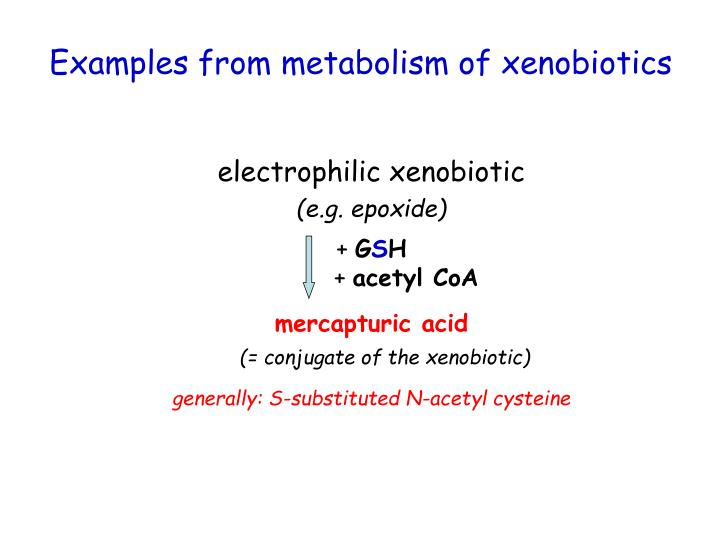 electrophilic xenobiotic