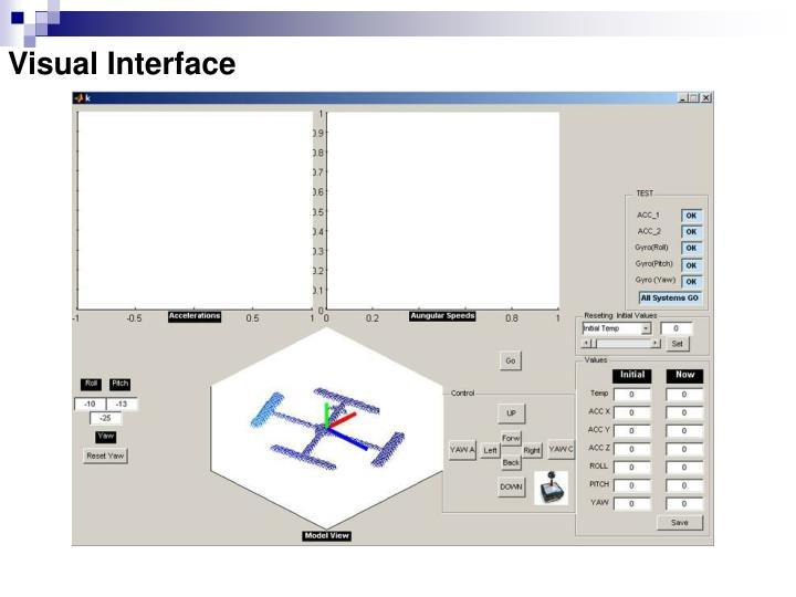 Visual Interface