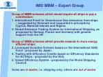 imo mbm expert group